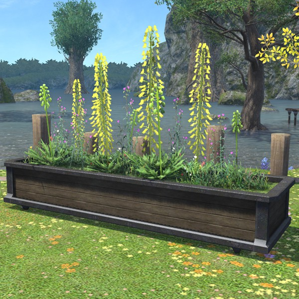 Large Planter Box