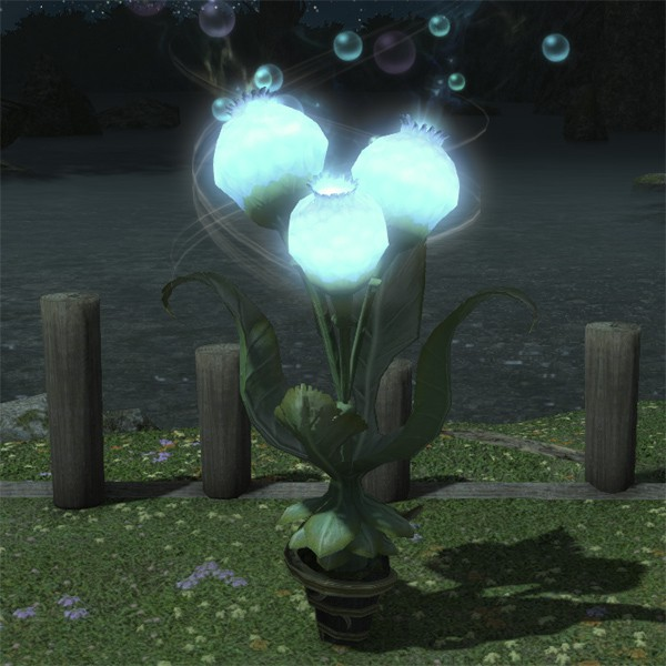 Moongrass Plot