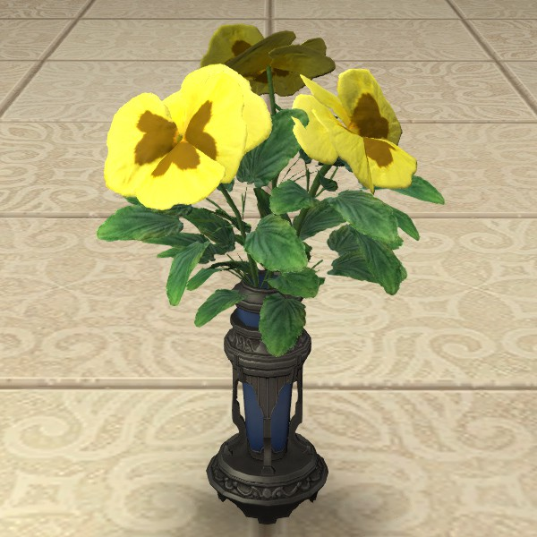 Yellow Violas