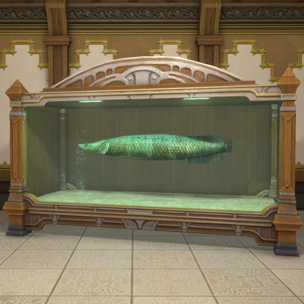 Tier 4 Aquarium